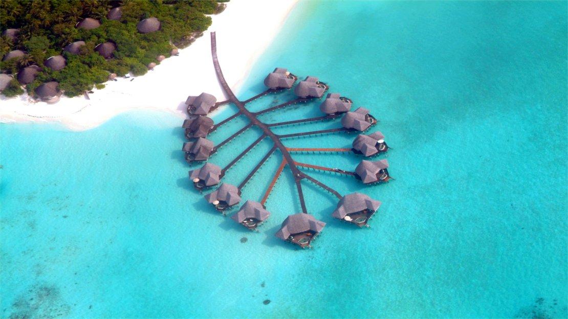 1/13  Coco Palm Resort, Maldives