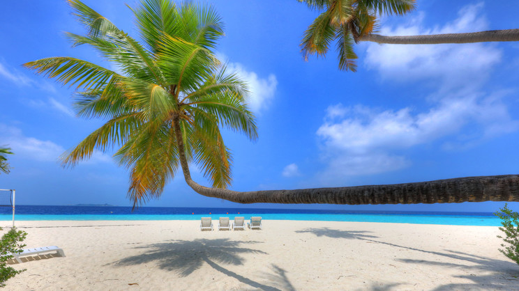 1/7  Fihalhohi Island Resort - Maldives