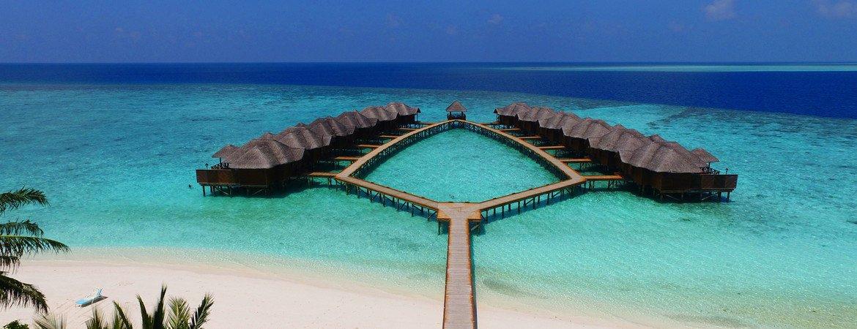 1/8  Fihalhohi Island Resort - Maldives